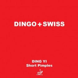 Raquettes Ping Pong revêtement Dingo Swiss Picot courts