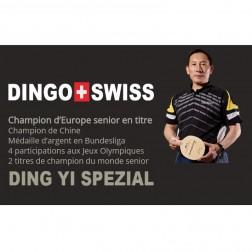 Cours particulier de tennis de table avec Ding Yi